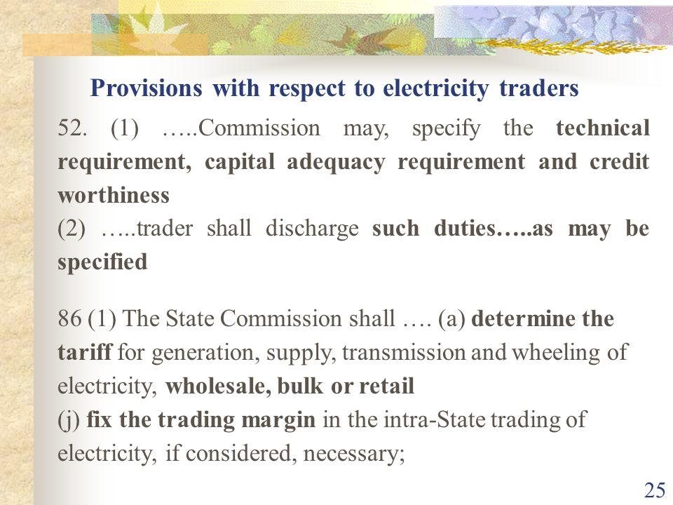 Provisions with respect to electricity traders