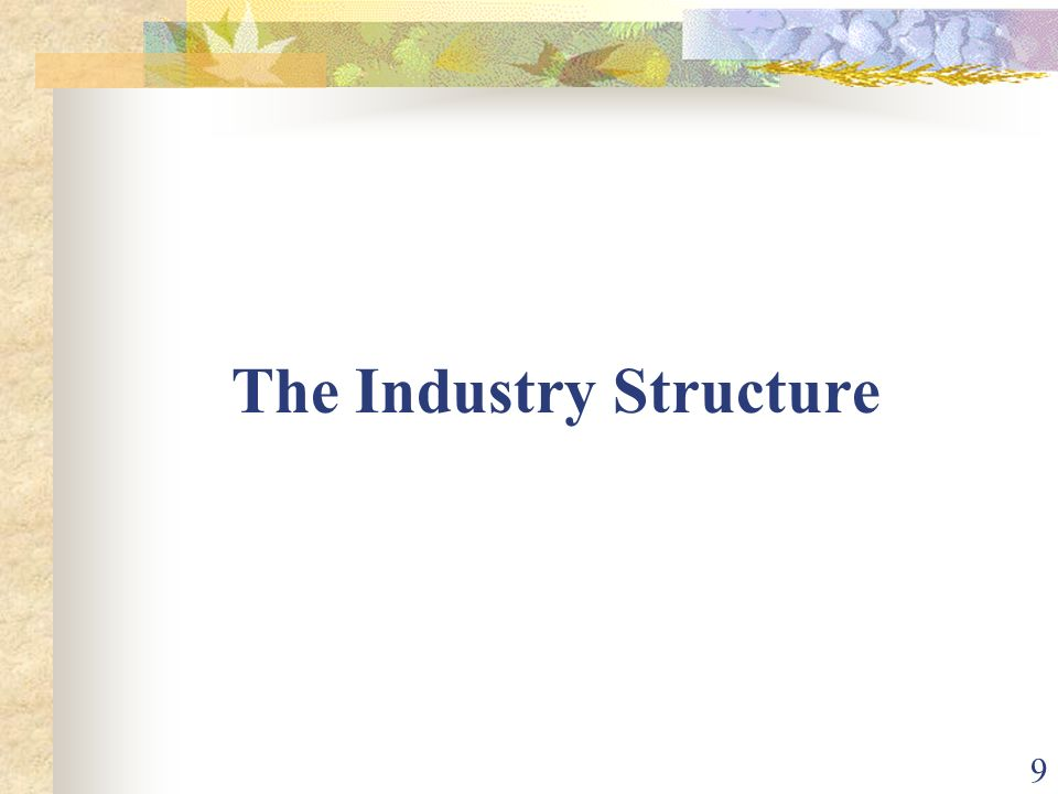 The Industry Structure