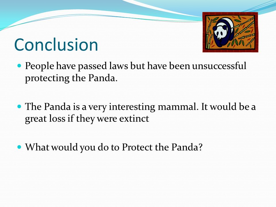 Conclusion People have passed laws but have been unsuccessful protecting the Panda.