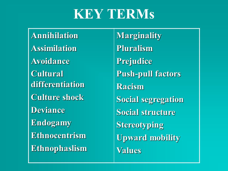 KEY TERMs Annihilation Assimilation Avoidance Cultural differentiation