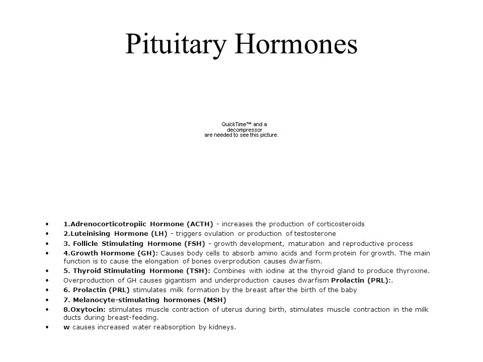 Pituitary Hormones 1.Adrenocorticotropiic Hormone (ACTH) - increases the production of corticosteroids.