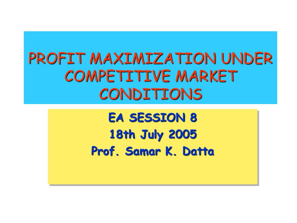 PROFIT MAXIMIZATION UNDER COMPETITIVE MARKET CONDITIONS