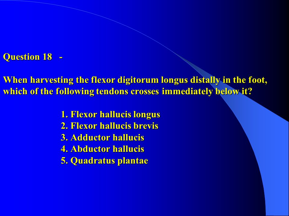 Question 18 - When harvesting the flexor digitorum longus distally in the foot, which of the following tendons crosses immediately below it.