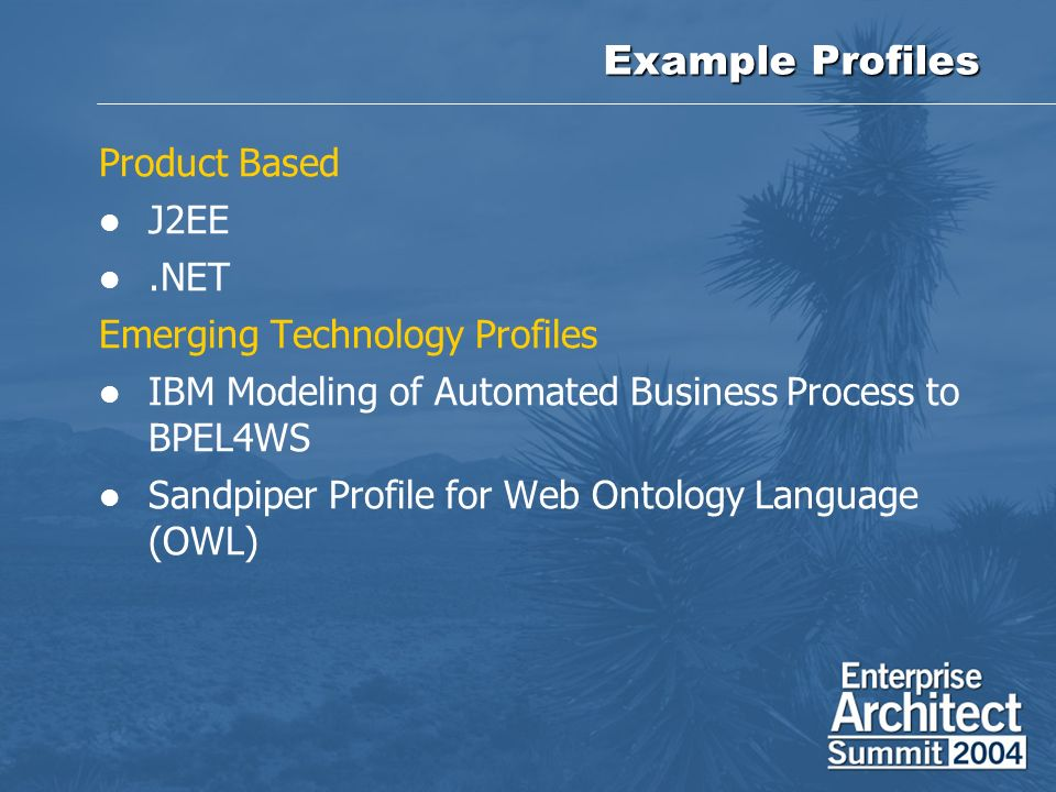 Example Profiles Product Based J2EE .NET Emerging Technology Profiles