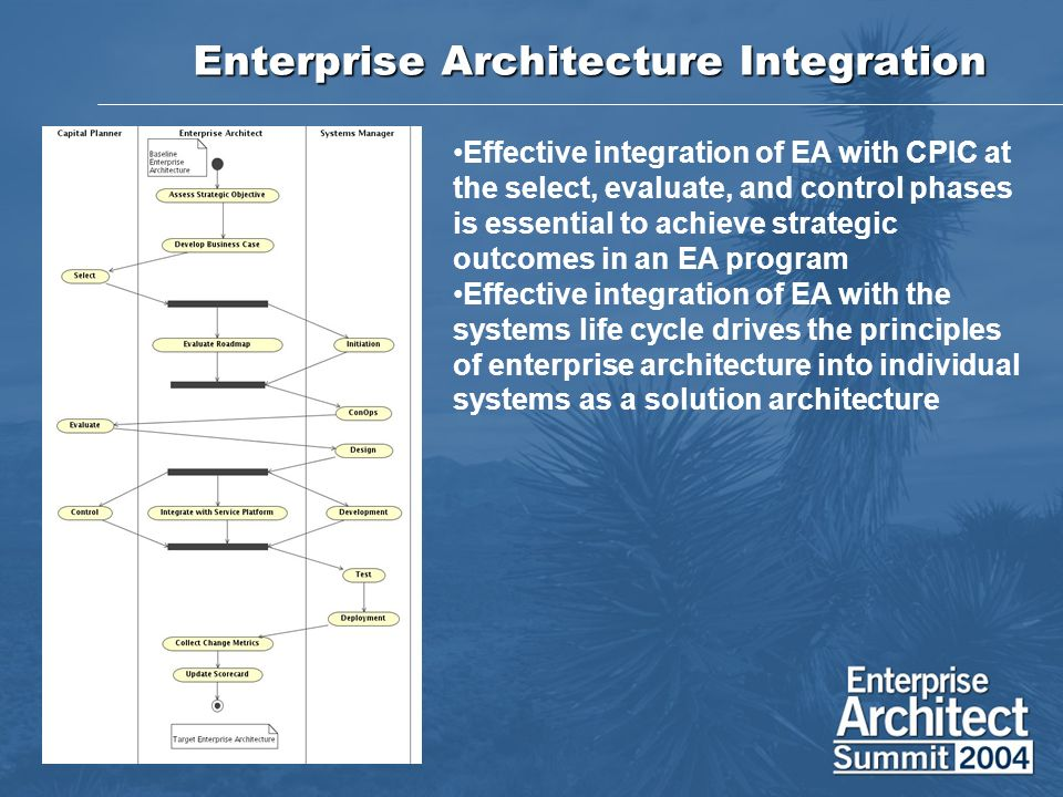 Enterprise Architecture Integration