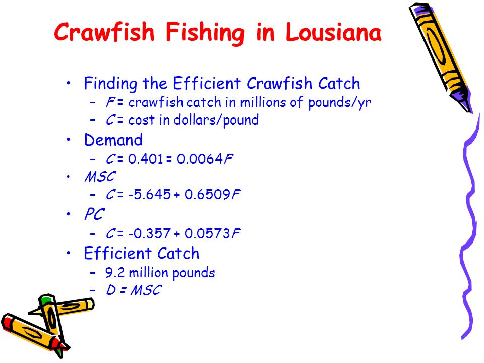 Crawfish Fishing in Lousiana