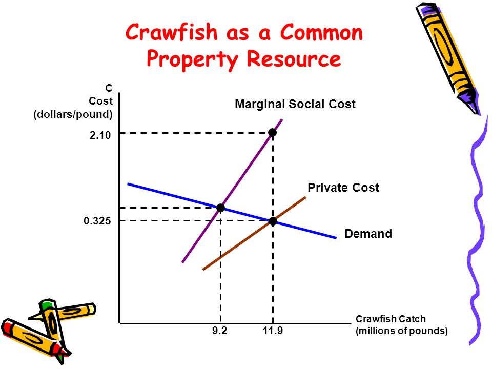 Crawfish as a Common Property Resource