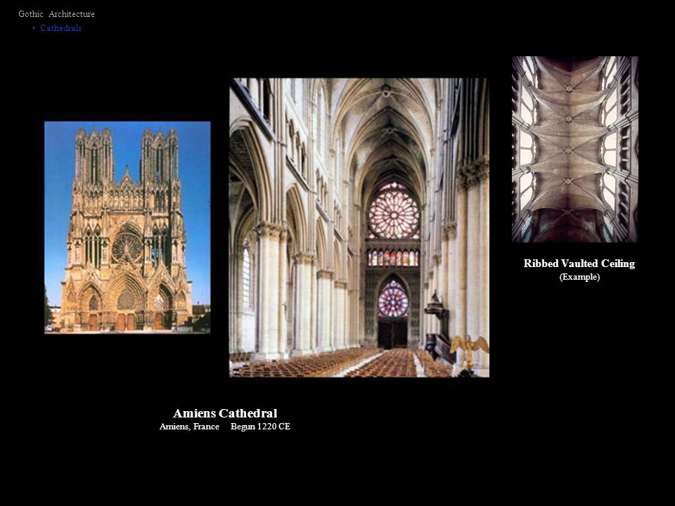 Ribbed Vaulted Ceiling