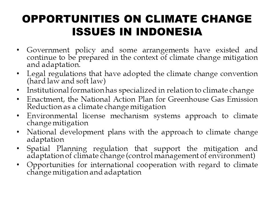 OPPORTUNITIES ON CLIMATE CHANGE ISSUES IN INDONESIA