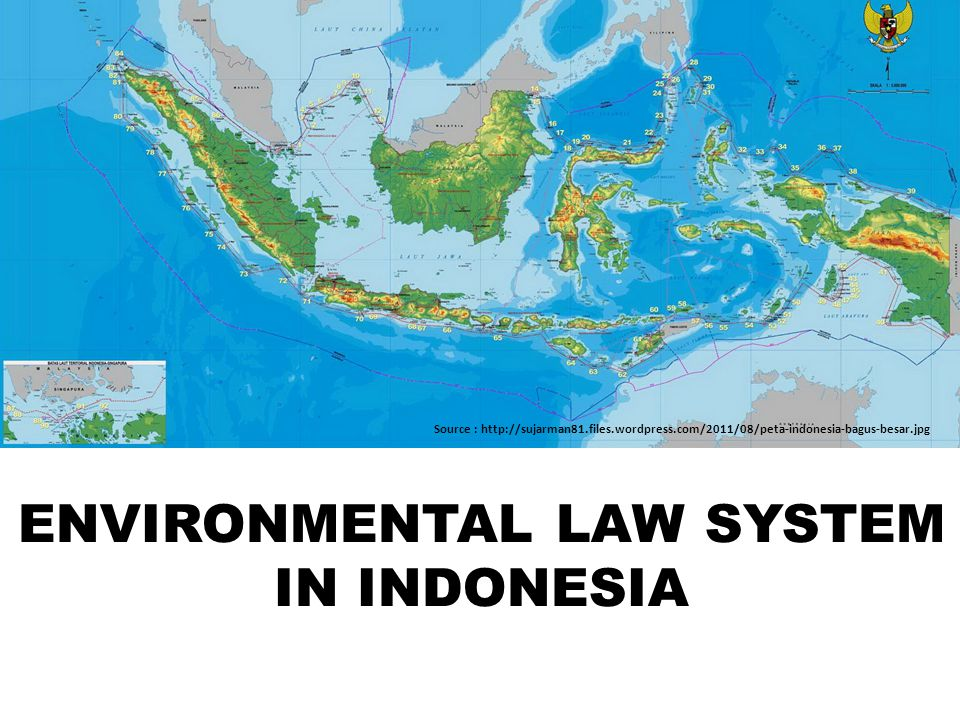 ENVIRONMENTAL LAW SYSTEM IN INDONESIA
