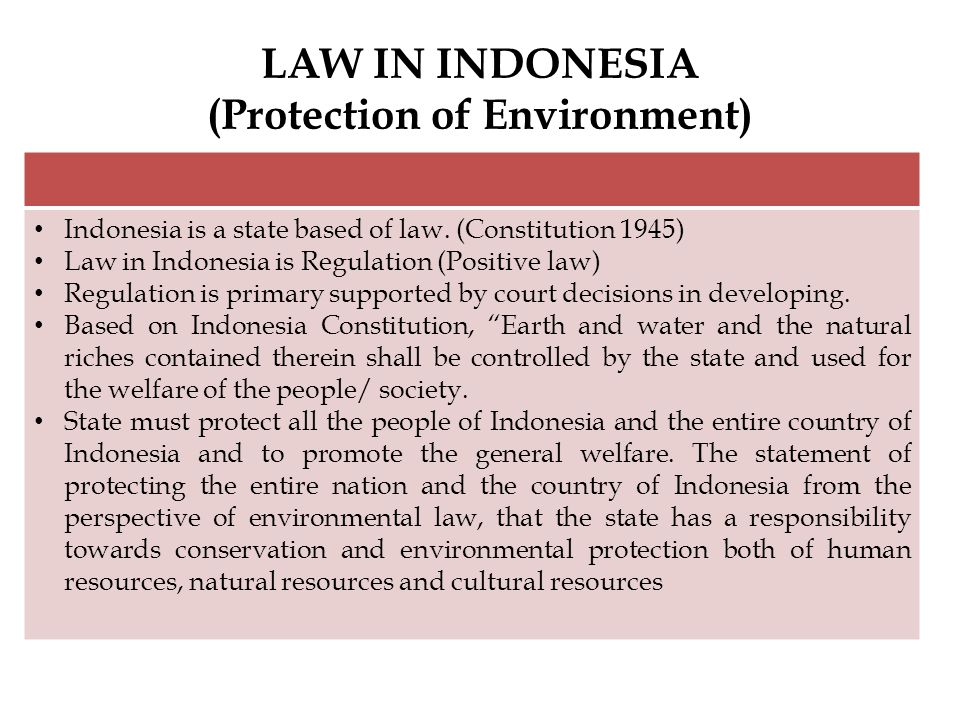 LAW IN INDONESIA (Protection of Environment)