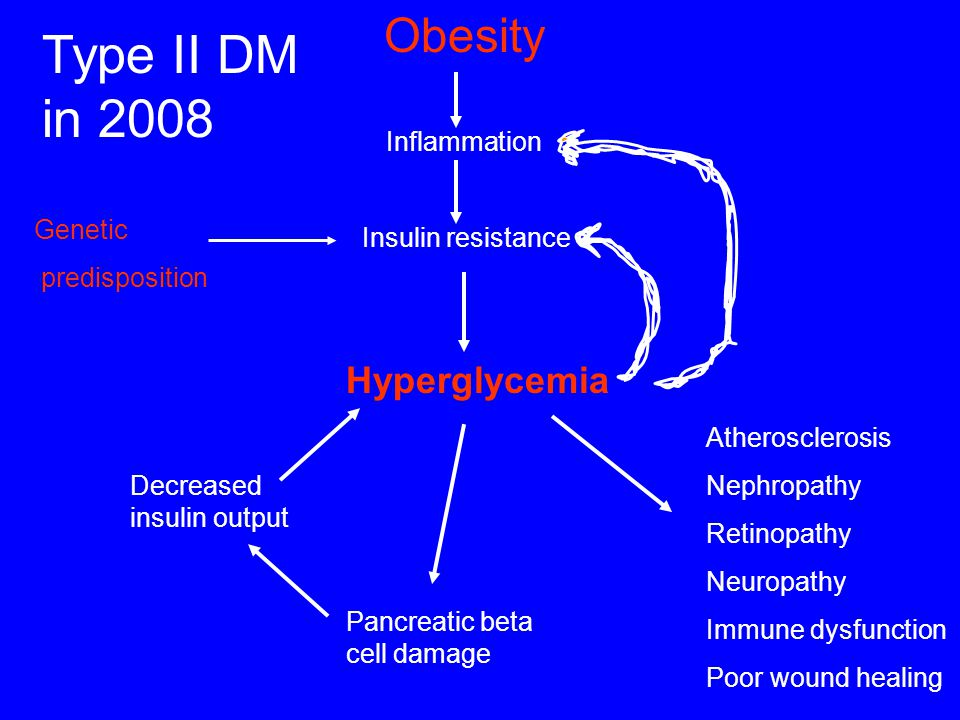 Type II DM in 2008 Obesity Hyperglycemia Inflammation Genetic