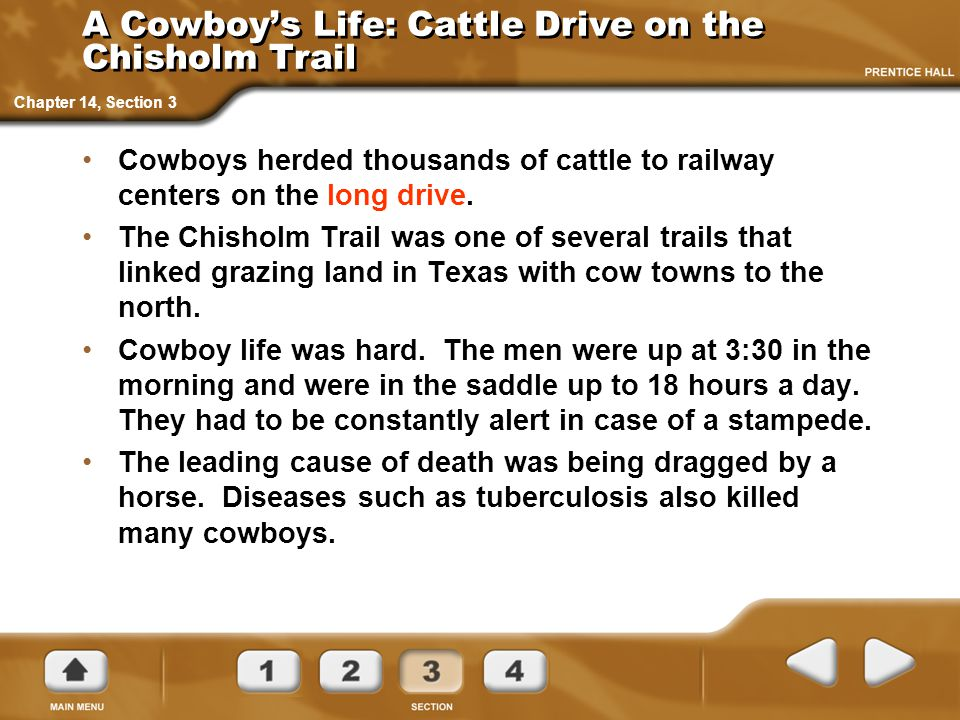 A Cowboy's Life: Cattle Drive on the Chisholm Trail