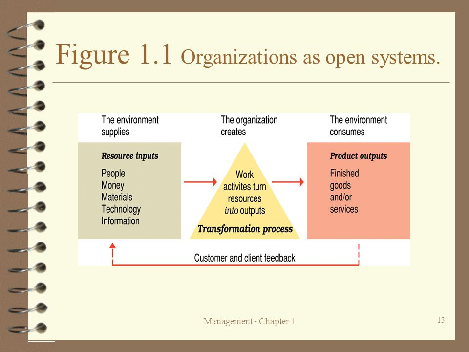 Figure 1.1 Organizations as open systems.
