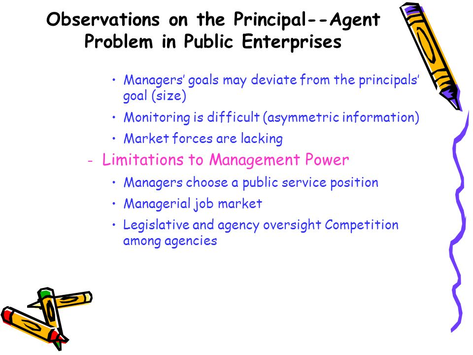 Observations on the Principal--Agent Problem in Public Enterprises