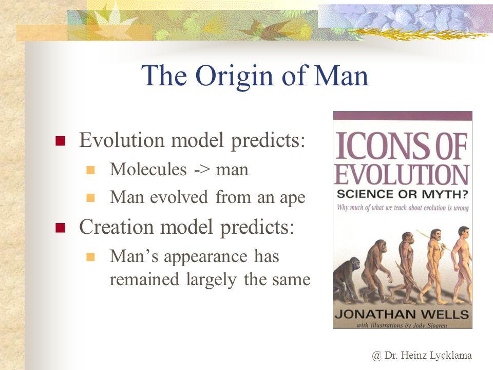 The Origin of Man Evolution model predicts: Creation model predicts: