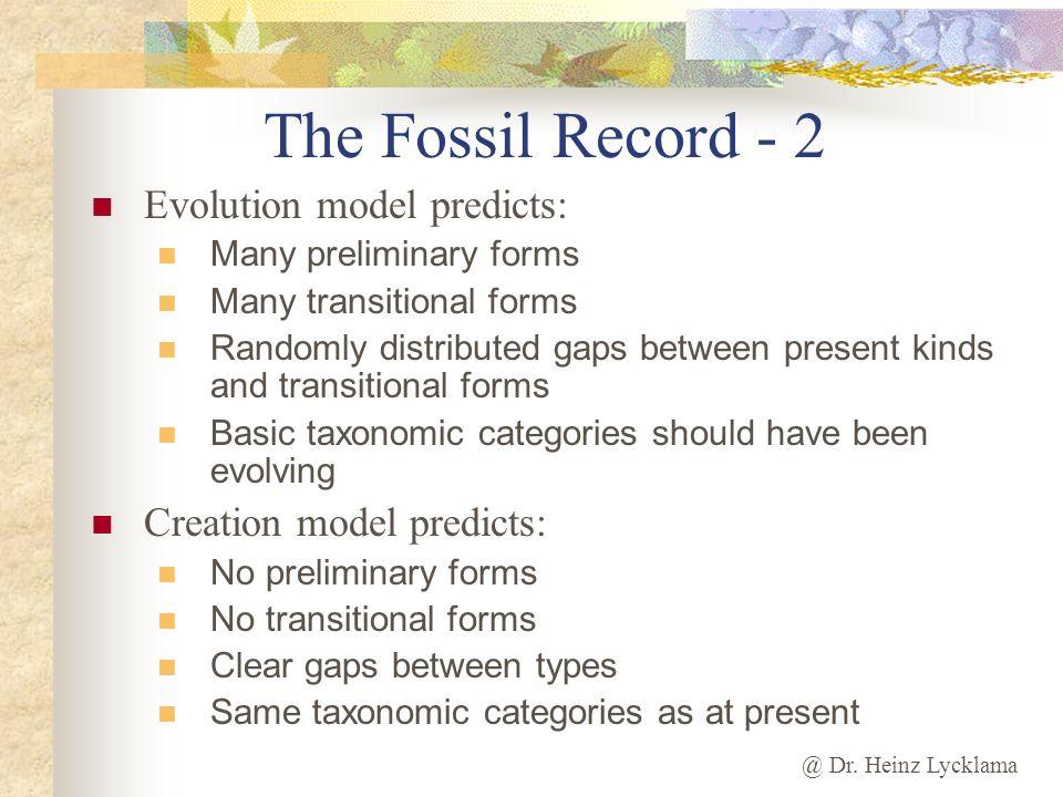 The Fossil Record - 2 Evolution model predicts: