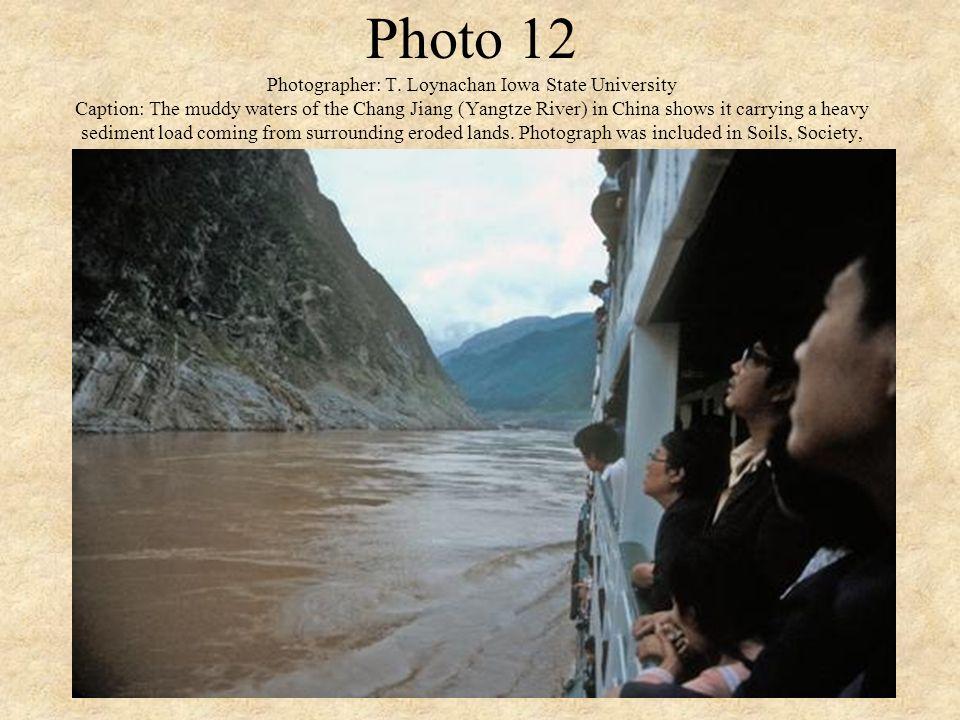 Photo 12 Photographer: T.