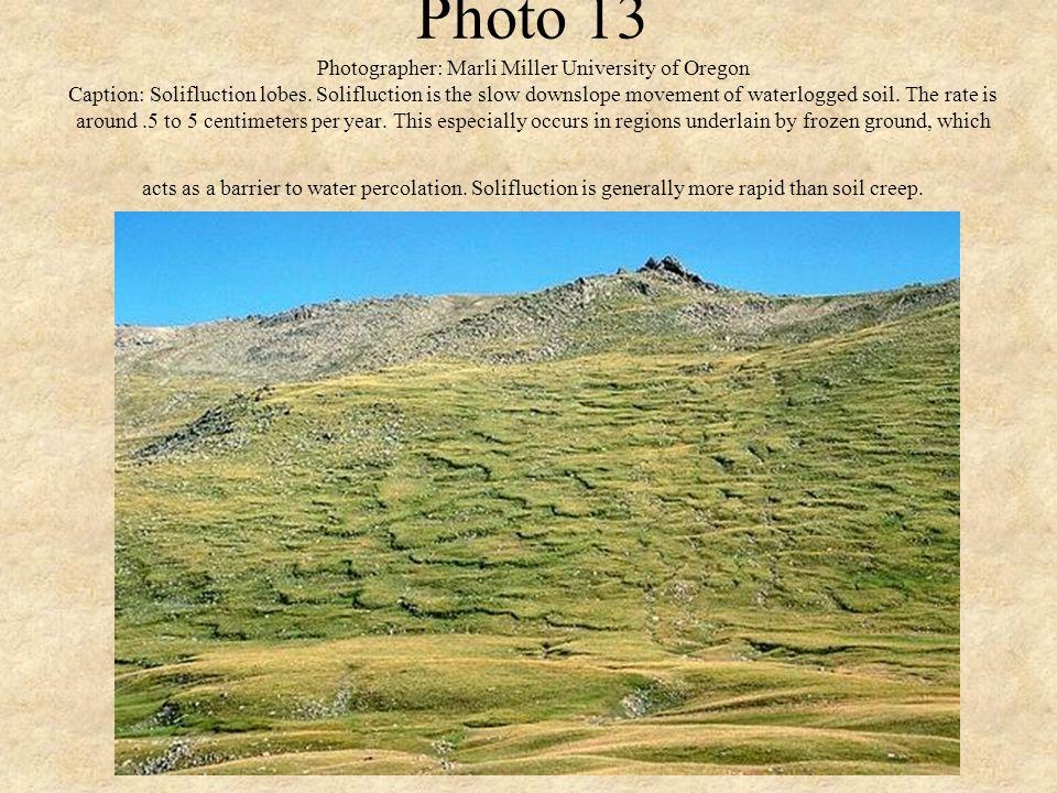 Photo 13 Photographer: Marli Miller University of Oregon Caption: Solifluction lobes.