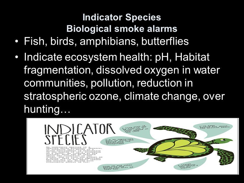 Indicator Species Biological smoke alarms