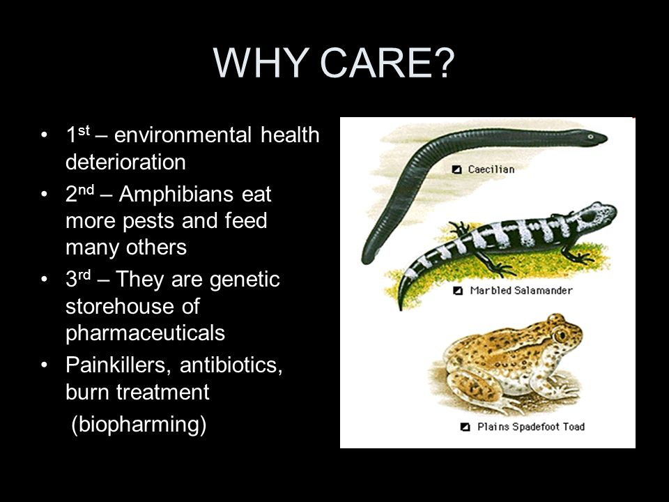 WHY CARE 1st – environmental health deterioration