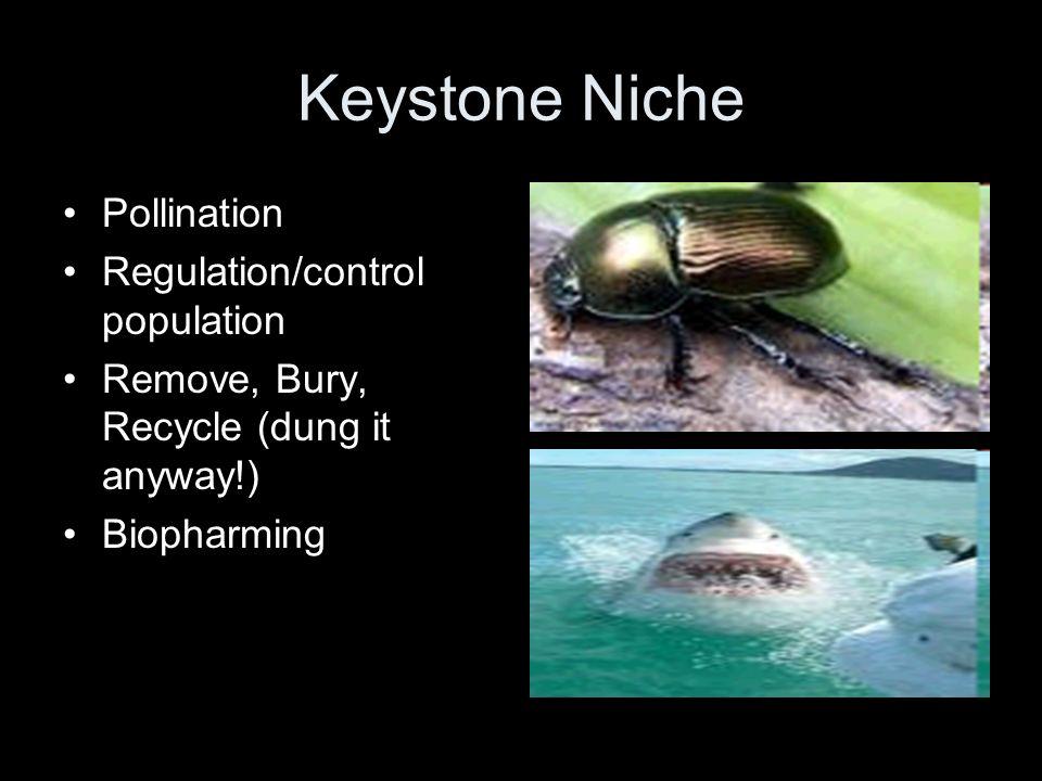 Keystone Niche Pollination Regulation/control population