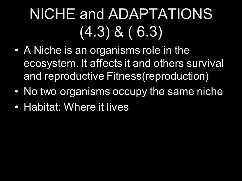 NICHE and ADAPTATIONS (4.3) & ( 6.3)