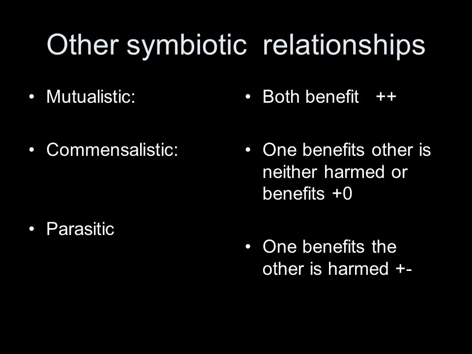 Other symbiotic relationships