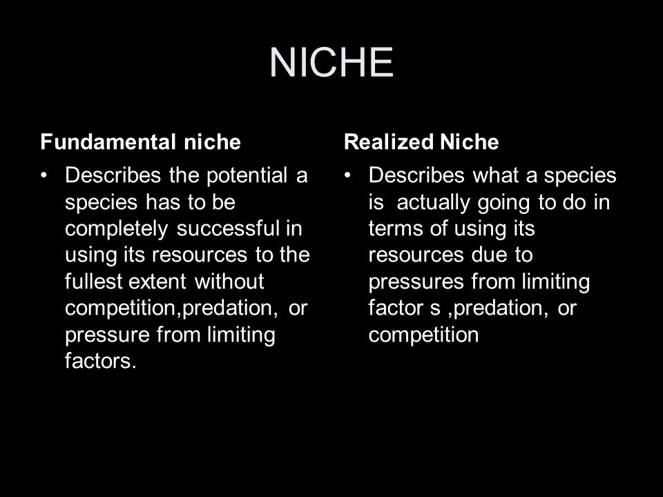 NICHE Fundamental niche Realized Niche