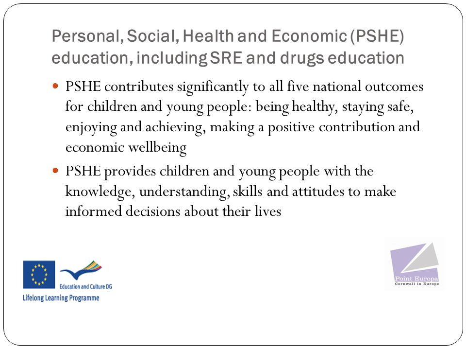 Personal, Social, Health and Economic (PSHE) education, including SRE and drugs education