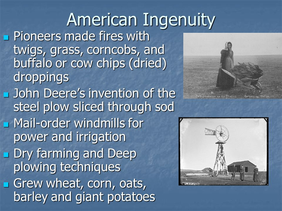 American IngenuityPioneers made fires with twigs, grass, corncobs, and buffalo or cow chips (dried) droppings.