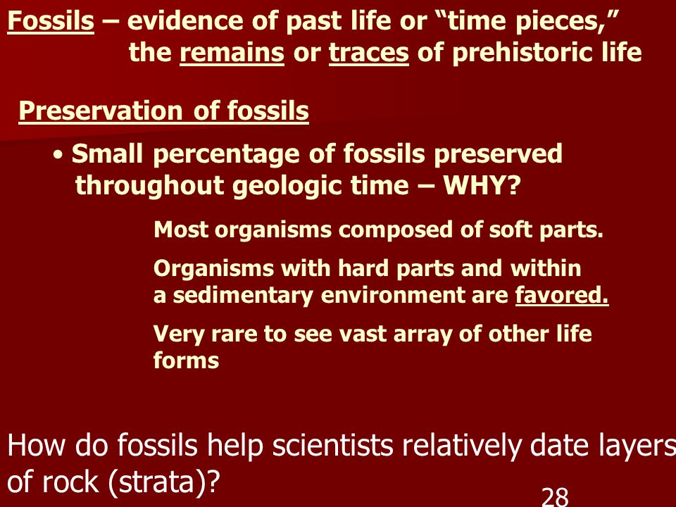 How do fossils help scientists relatively date layers