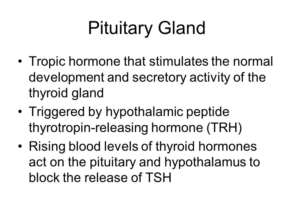 Pituitary Gland Tropic hormone that stimulates the normal development and secretory activity of the thyroid gland.