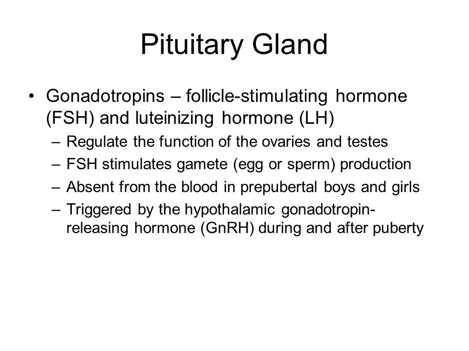 Pituitary Gland Gonadotropins – follicle-stimulating hormone (FSH) and luteinizing hormone (LH) Regulate the function of the ovaries and testes.