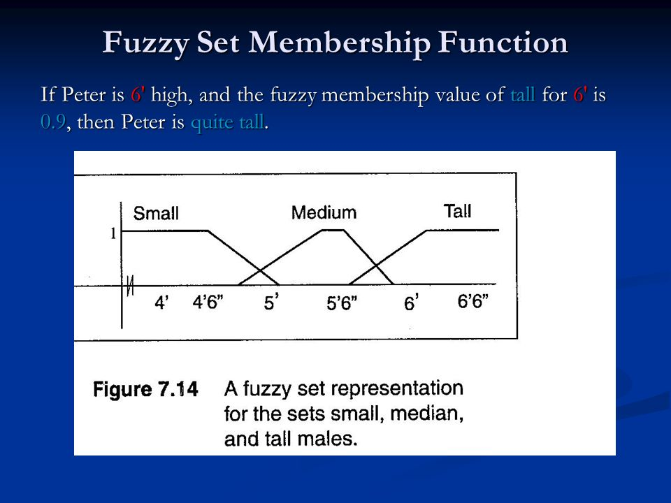 Fuzzy Set Membership Function