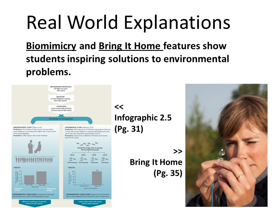 Real World Explanations