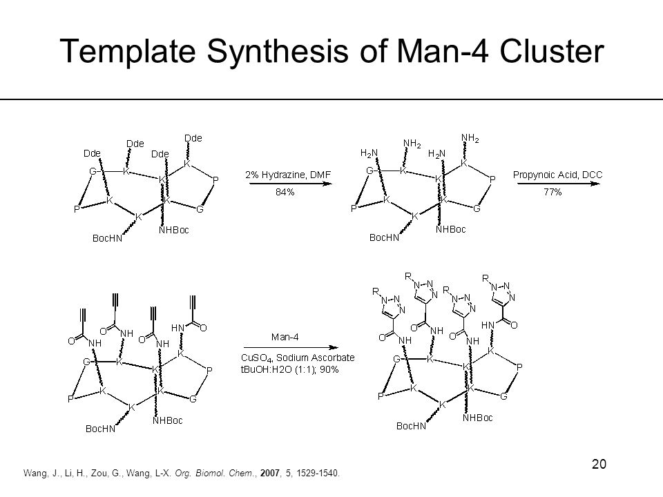 Template Synthesis of Man-4 Cluster