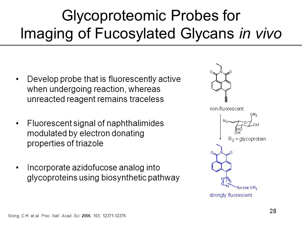 Glycoproteomic Probes for Imaging of Fucosylated Glycans in vivo