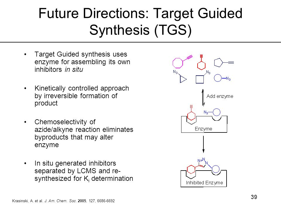 Future Directions: Target Guided Synthesis (TGS)