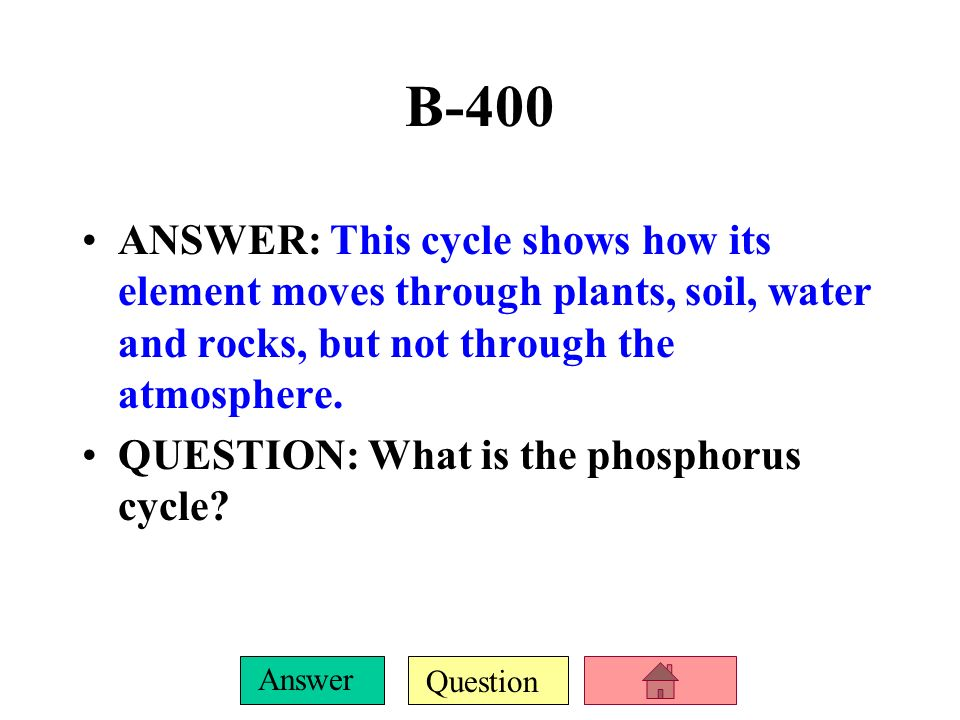 B-400 ANSWER: This cycle shows how its element moves through plants, soil, water and rocks, but not through the atmosphere.