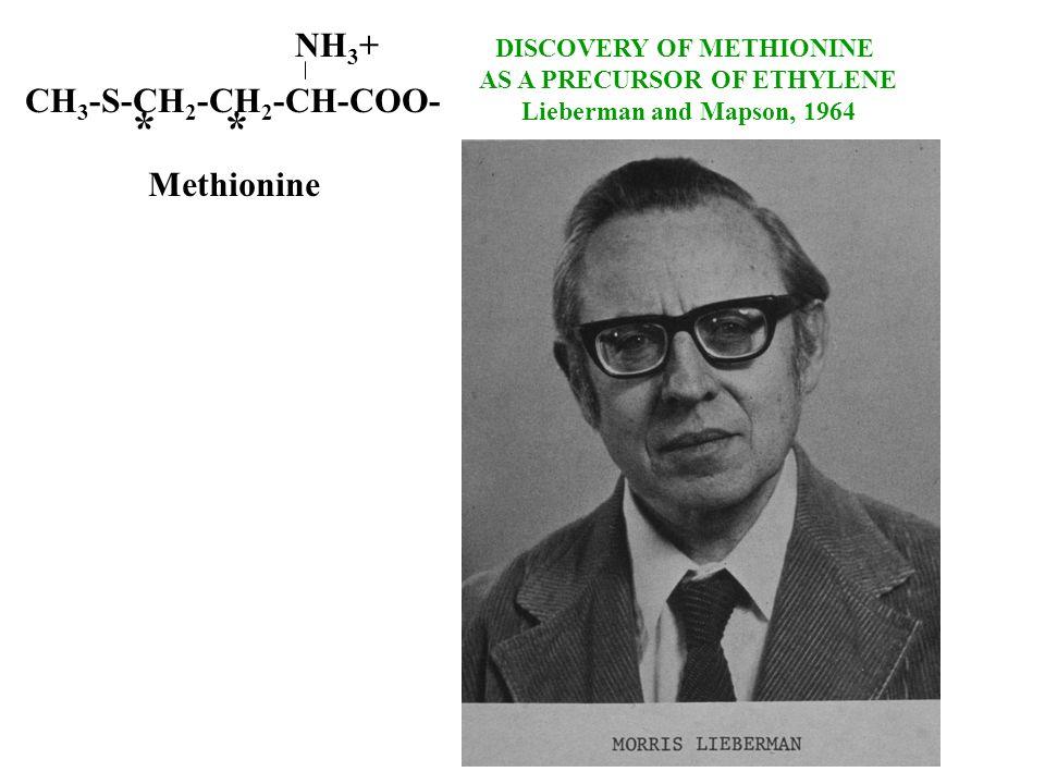 DISCOVERY OF METHIONINE AS A PRECURSOR OF ETHYLENE