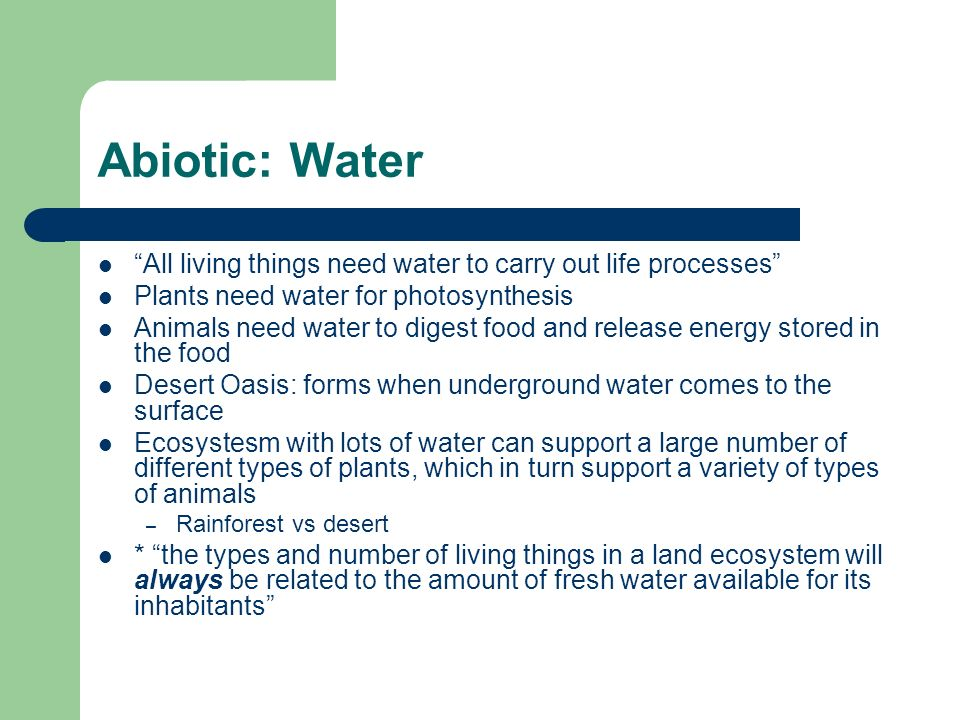 Abiotic: Water All living things need water to carry out life processes Plants need water for photosynthesis.