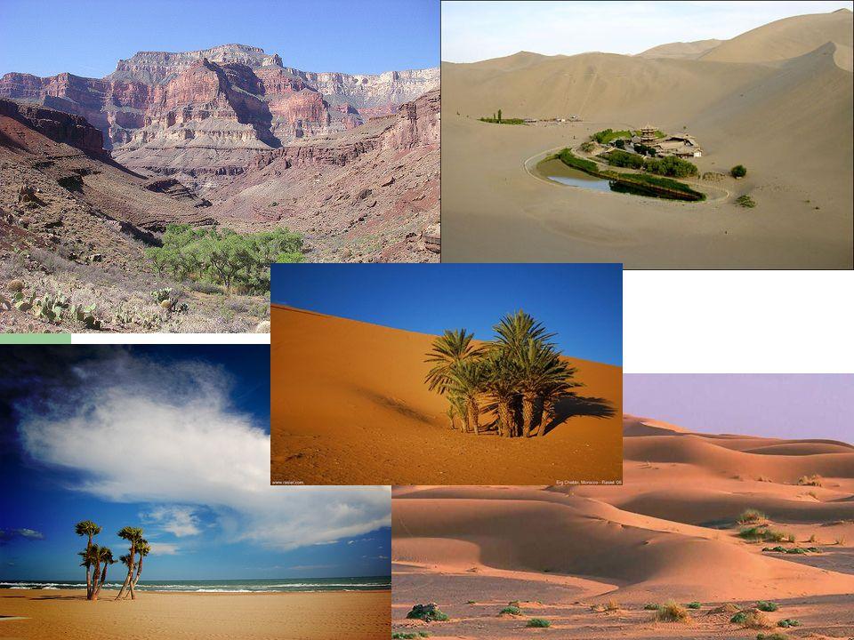 http://photopostsblog.com/2008/12/16/desert-oasis-photos/