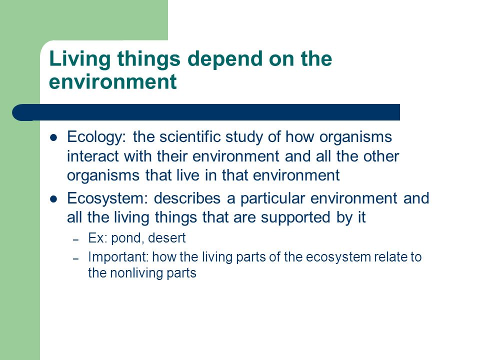 Living things depend on the environment