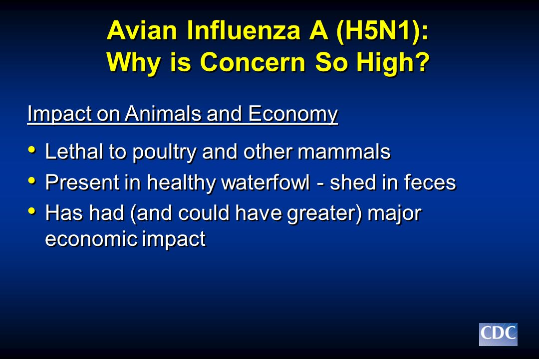Avian Influenza A (H5N1): Why is Concern So High