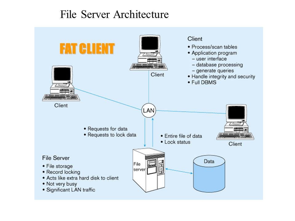 Database - The Client-Server Database