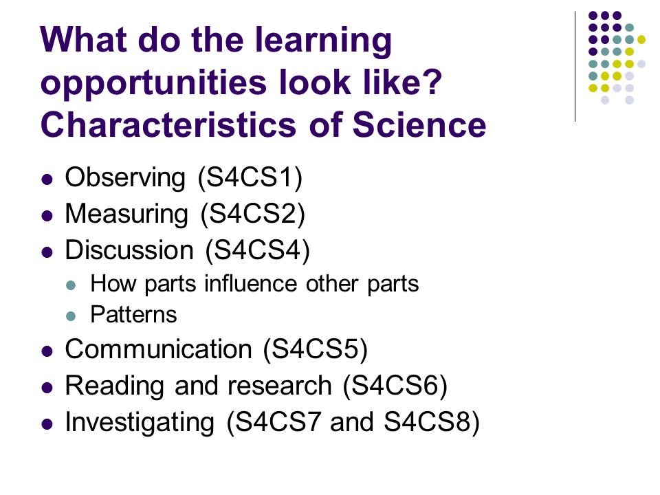 What do the learning opportunities look like