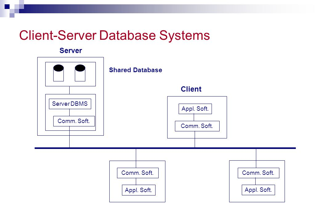 Client-Server Database Systems