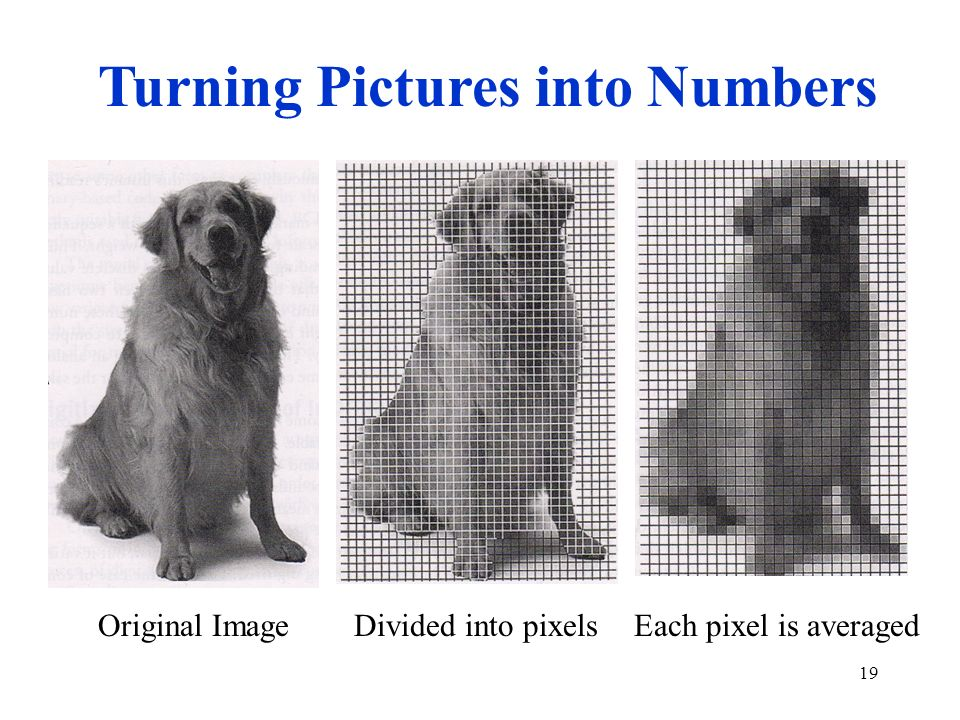 Turning Pictures into Numbers
