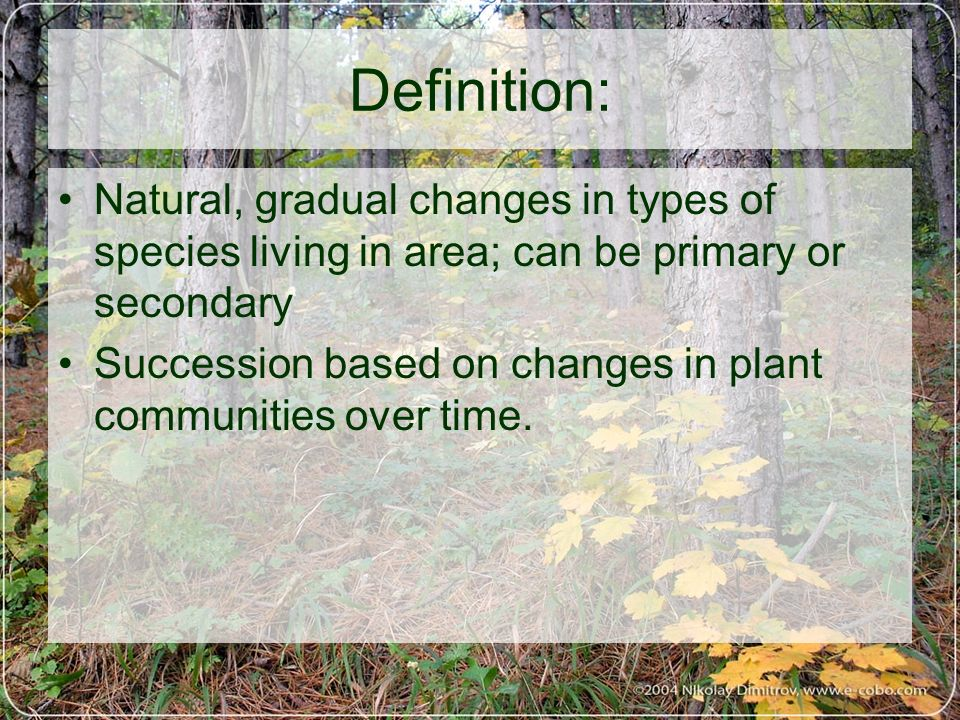Definition: Natural, gradual changes in types of species living in area; can be primary or secondary.